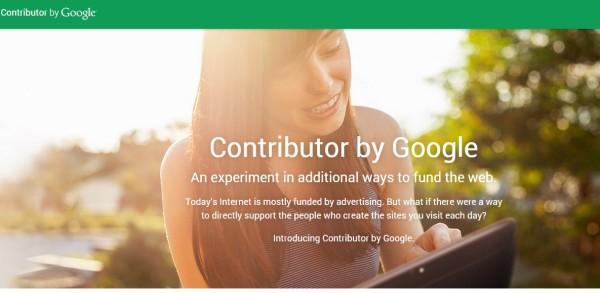 Google_contributor